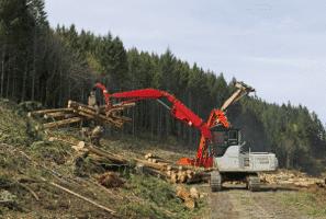 forestry-logging
